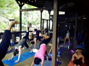 TY_LP_Nature-Yoga